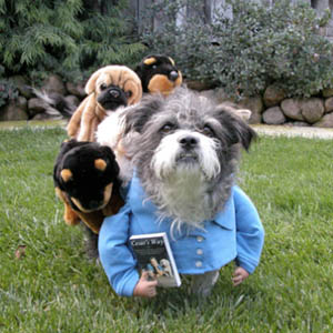 DIY Cesar Milan dog costume