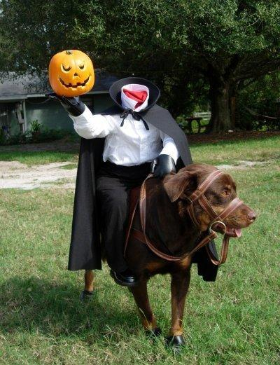 diy headless horseman dog costume