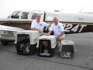 ROMP Rescue Volunteers, pilot and paws