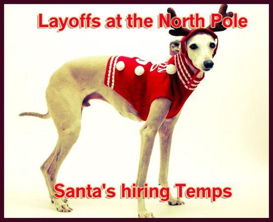 Funny holiday dog card saying, dog reindeer holiday card, santas hiring temps, layoffs at the north pole, dog in antlers, dog as reindeer,