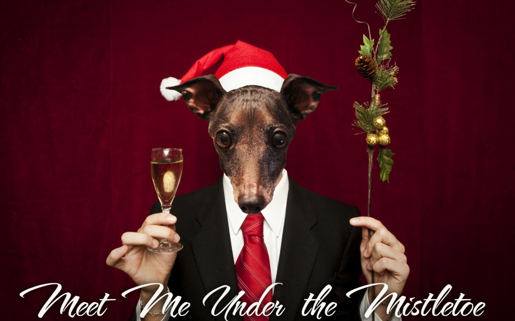 Dog Mistletoe Christmas card