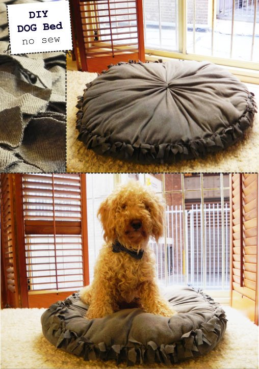 Diy Dog Bed Out Of Old Clothes No Sew