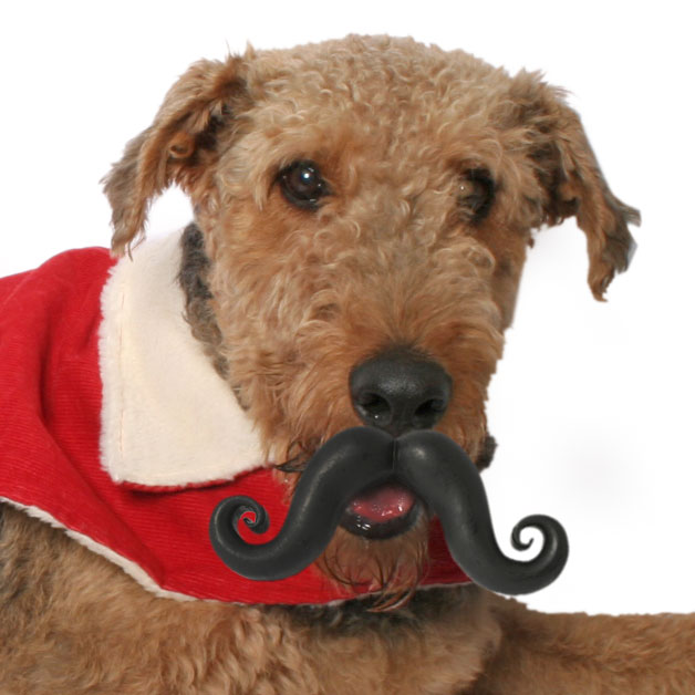 Dog Christmas Gifts, Humunga Stache durable dog toy, dog mustache, funny dog toy, funny dog toys