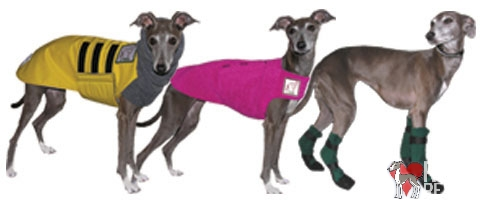 Italian Greyhound winter coat boots booties