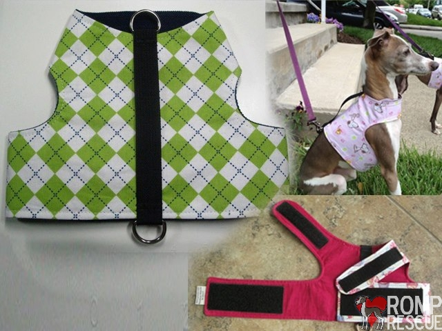 reversible harness vest, italian greyhound vest, ig vest, ig, custom made, custom, made, reversible vests by linda, linda, rvbl, coupon, code, coupon code, discount, promo code, promo