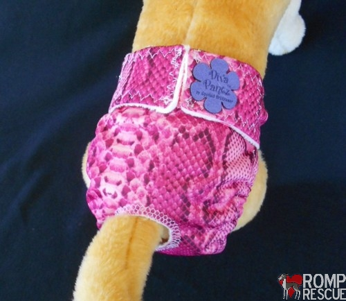 Italian Greyhound Diaper