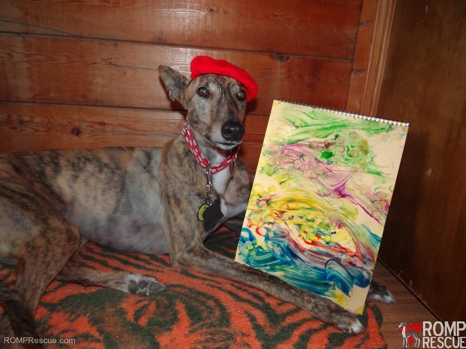 painting dog, radar, greyhound, paintar, pawcasso
