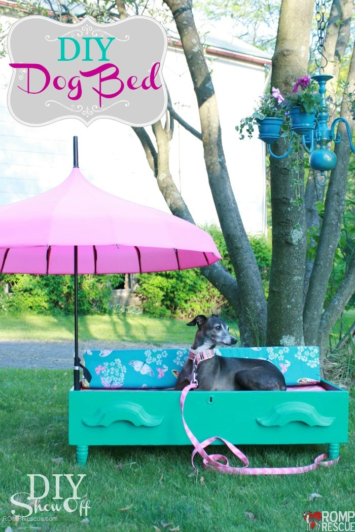 DIY Dog bed dresser, diy, dog bed, diy dresser bed, italian greyhound bed, diy italian greyhound, iggy, ig, do it yourself, homemade, handmade, home made, hand made, umbrella, summer, paint, dresser drawer