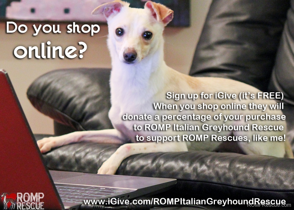 Shop Online to support ROMP, iGive, romp rescue, romp italian greyhound rescue, donation, support, fundraiser, igive, online fundraiser, online shopping, raise money, help, italian greyhound, chicago, illinois, romp,