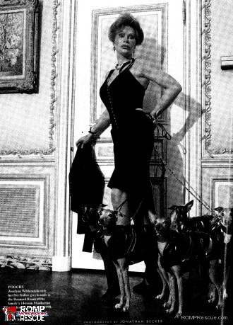 Joclyn wildenstein, italian greyhound, new york, vanity fair, italian greyhounds, celebrity, famous