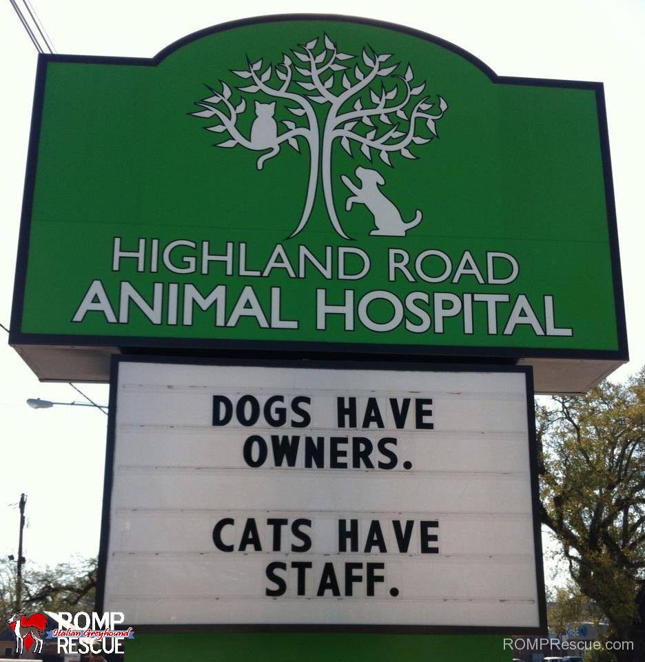 veterinarian, funny veterinarian sign, funny vet sign, funny, vet, sign, vet, marquee, dogs have owners cats have staff