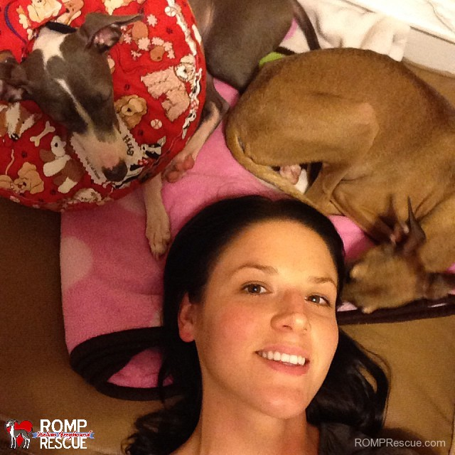 Megaesophagus Neck Hug by Wag Tail Farms Coupon Code, megaE, megae dog, ME dog, condition, megaesophagus, megae dog, italian greyhound, dog, dog,s pet, canine, diagnosis, help, support, suggestions, how to, products, neck hug, super neck hug, neck pillow, stop,