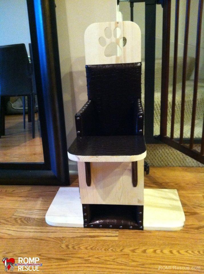 megaesophagus, canine, dog, italian greyhound, bailey chair, rescue, romp, mega-e, k9, megae, esophagus, condition, help, chair, bailey, bailey chairs 4 dogs, bailey chairs for dogs