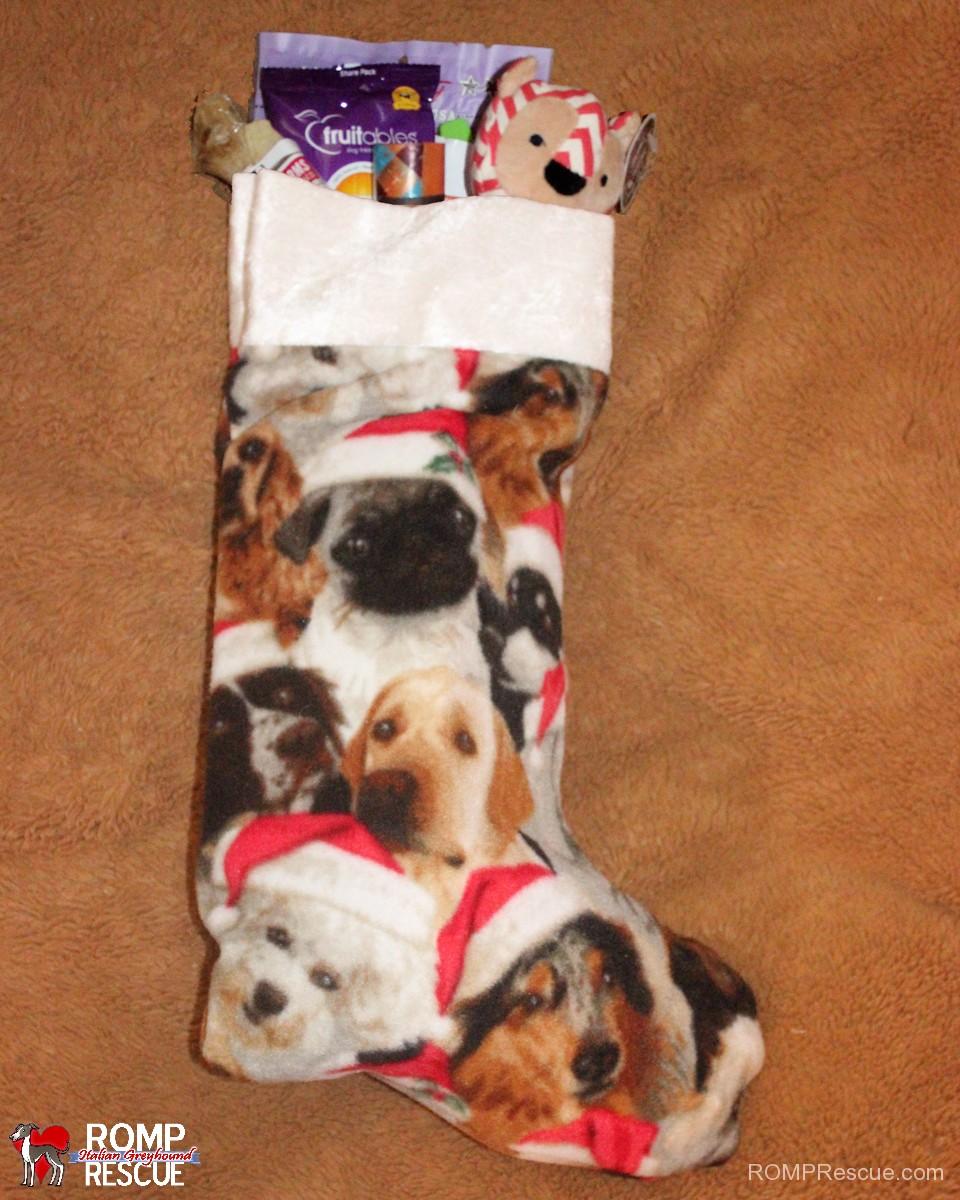 dog, christmas, holiday, stocking, stuffed, fundraiser, rescue, romp, italian greyhound, chicago, guy, gift, pet, pup, dog, dogs, pets, pups, italian greyhound, iggy, italian greyhounds