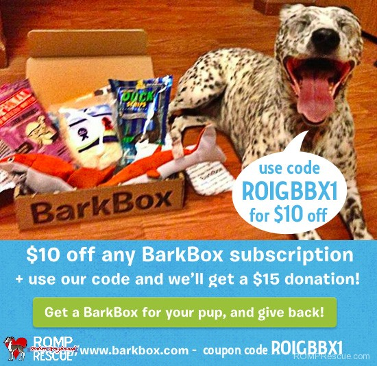barkbox coupon code, holiday weekend, special, discount, promo code, 2013, dog, gift, perfect, unique, special, present, christmas, thanksgiving, birch box, subscription, box, roigbbx1, romp rescue, give back